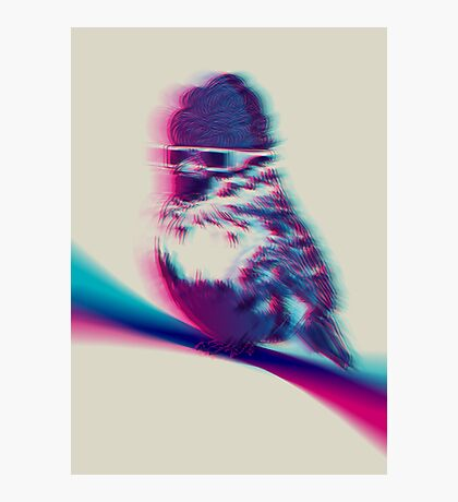 Bird Hair Day Photographic Print