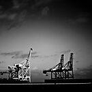 steel giants by paul erwin