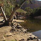 Outback river by Lyn Fabian