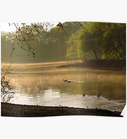 Morning on the River Poster