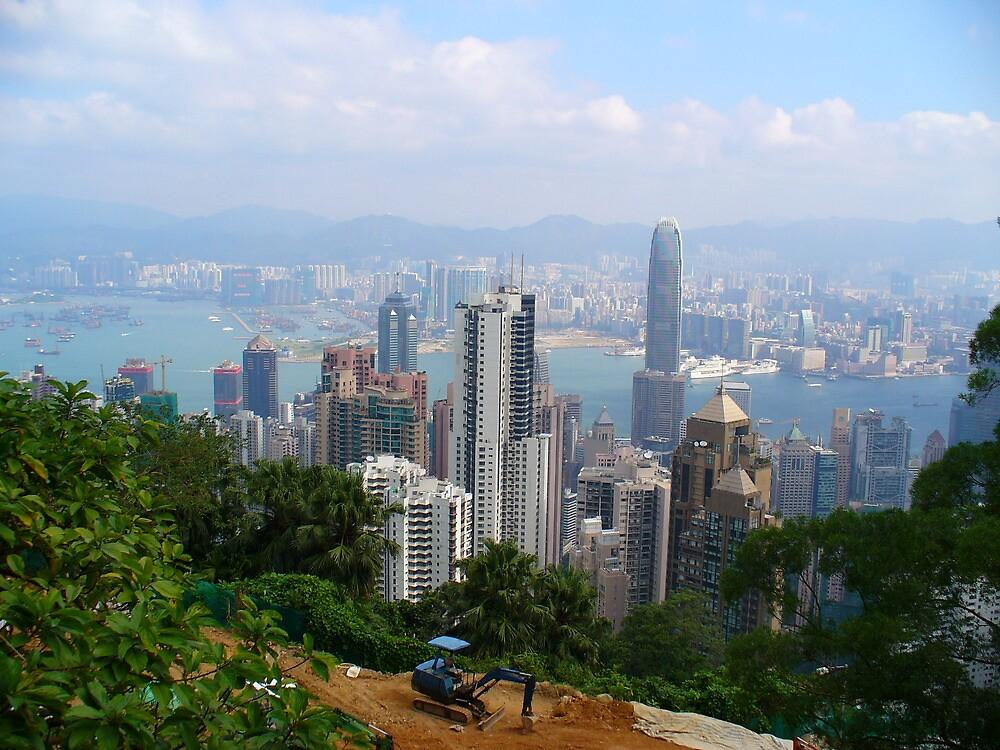 Hong Kong by msayuri