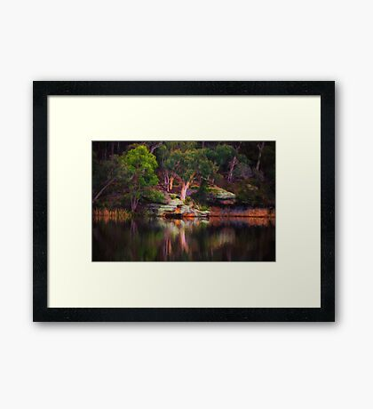 In a Reflective Mood - Dunnes Swamp NSW Framed Print