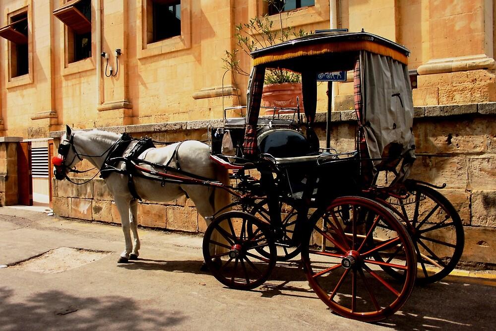 Maltese horse drawn Cart by DRDJ