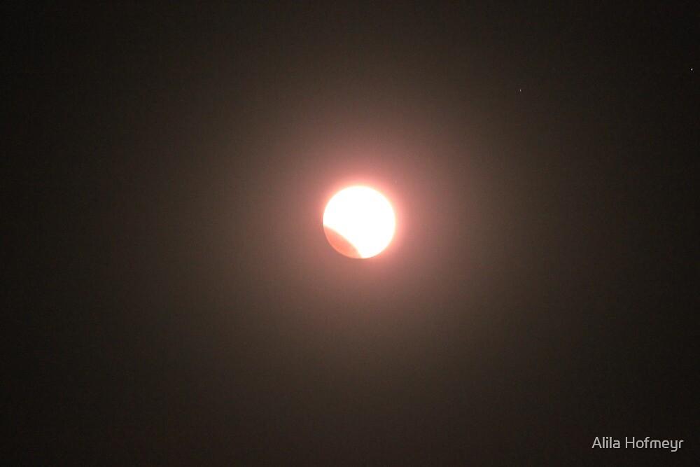 Lunar Eclipse 2011 by Alila Hofmeyr