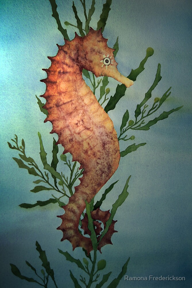 Seahorse by Ramona Frederickson