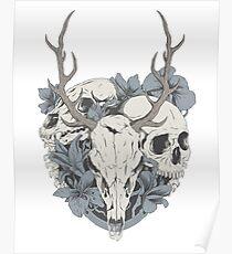 Skulls & flowers Poster