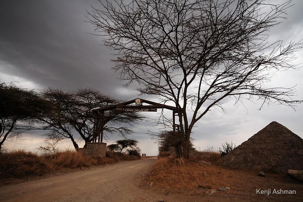 Welcome to the Serengeti by Kenji Ashman