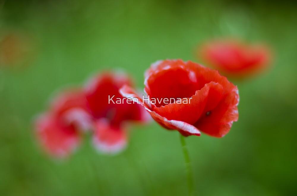 Fading away by Karen Havenaar