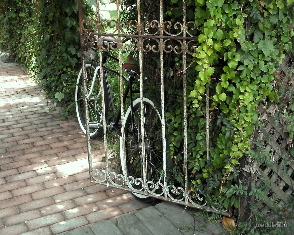 Bicycle Beyond The Gate by waddleudo
