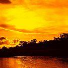 Okavango sunset by Irene  van Vuuren