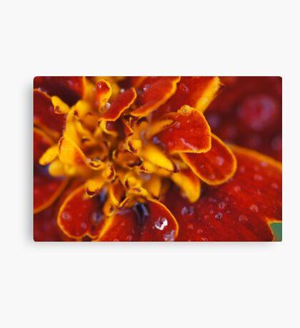 Durango Red Canvas Print