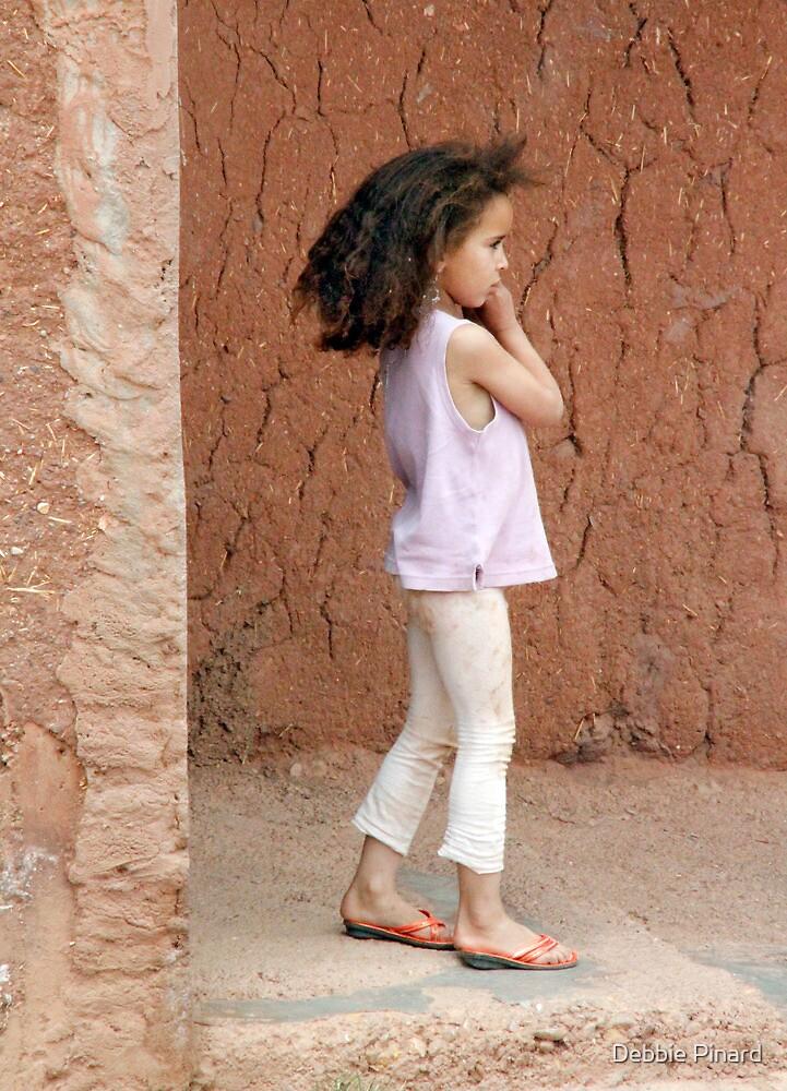 Dadas Gorge Beauty, Morocco by Debbie Pinard