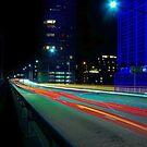 Light of Speed by Len  Gunther