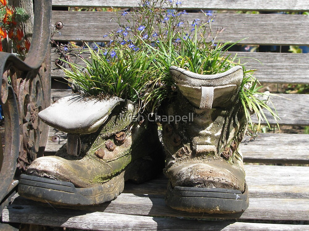 Bloom'n Old Boots by Mish Chappell