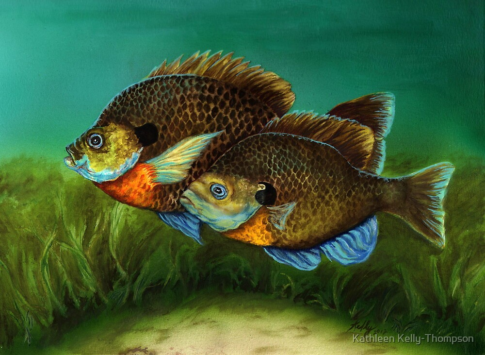 Pretty Little Panfish by Kathleen Kelly-Thompson