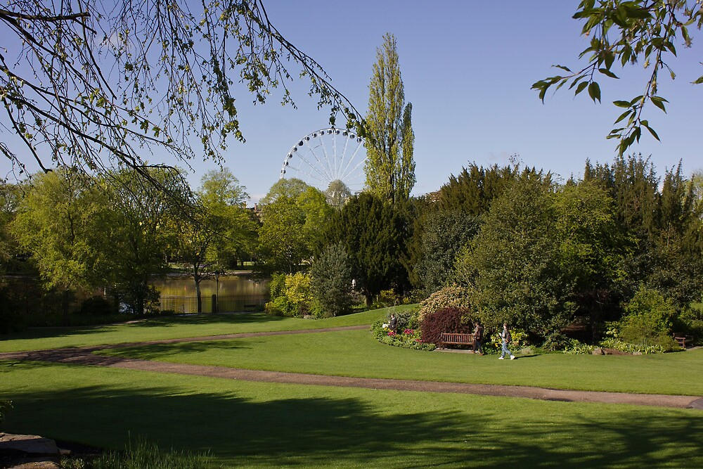 York Museum Gardens & The Yorkshire Wheel by Mike Freedman