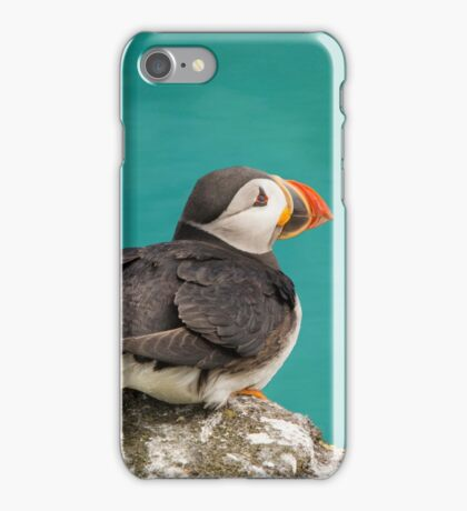 Puffin on cliff iPhone Case/Skin
