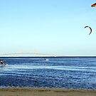 Kite Surfing by the Skyway by Laurie Perry