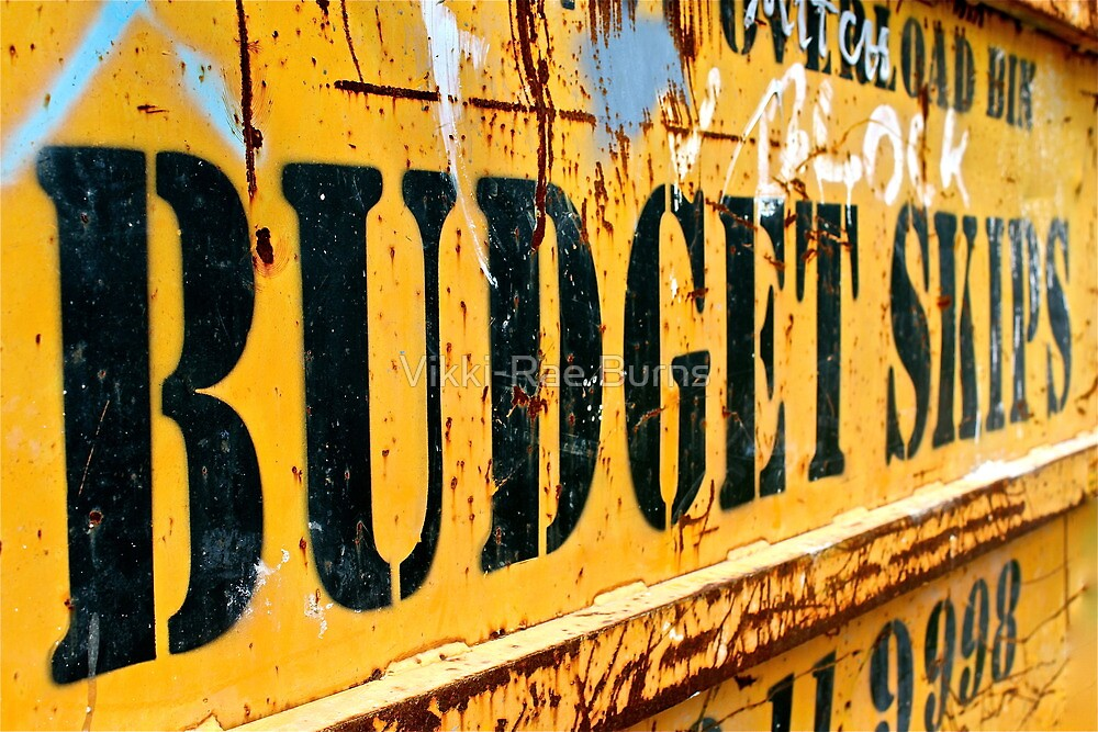Budget Skips by Vikki-Rae Burns