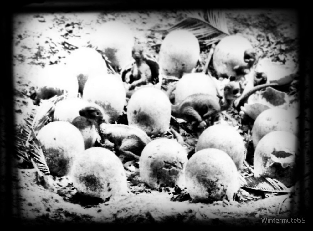 They hatch by Wintermute69