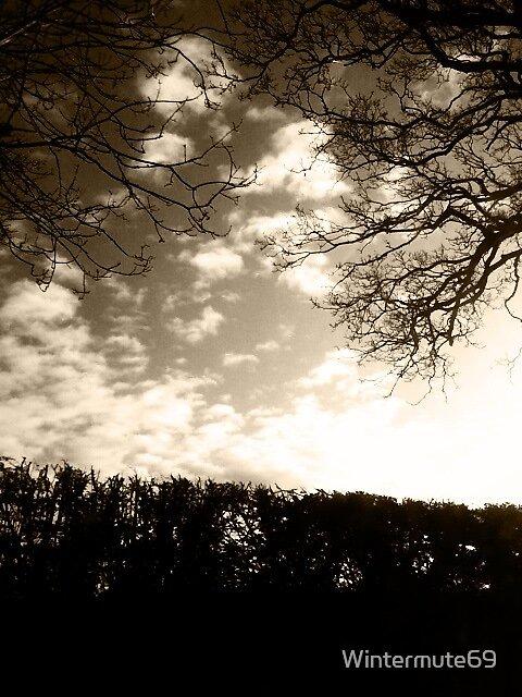 Dark tree by Wintermute69