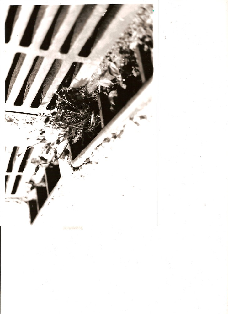 Grate by Andi94