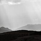 Perthshire Light by Tim Haynes