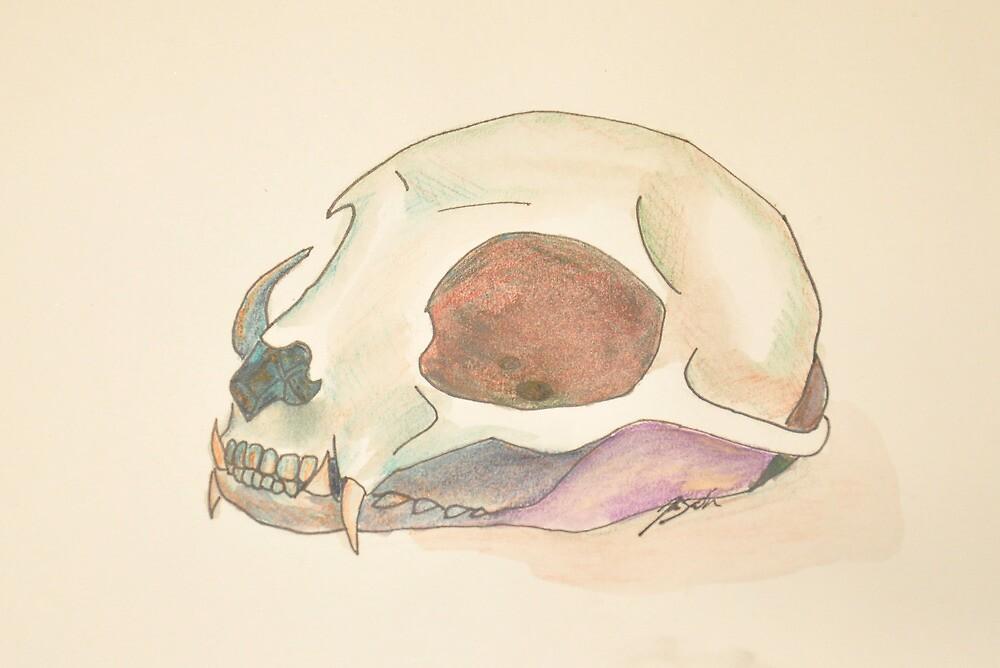 Cat Skull by CallMeAsinine