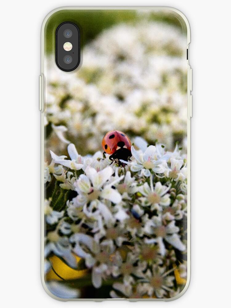Ladybug Iphone Case by TLund