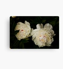 Flowers seem intended for the solace of ordinary humanity. Canvas Print