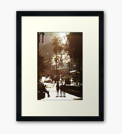 Sao Paulo Framed Print