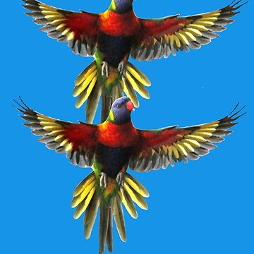 rainbow lorikeet t-shirt by ralphyboy