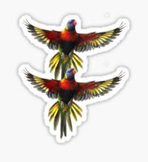 rainbow lorikeet t-shirt Sticker