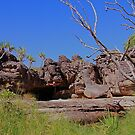 The magic of Arnhem Land - amazing scenery1 by georgieboy98