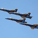 Baltimore Blue Angels 3 by Rob Diffenderfer