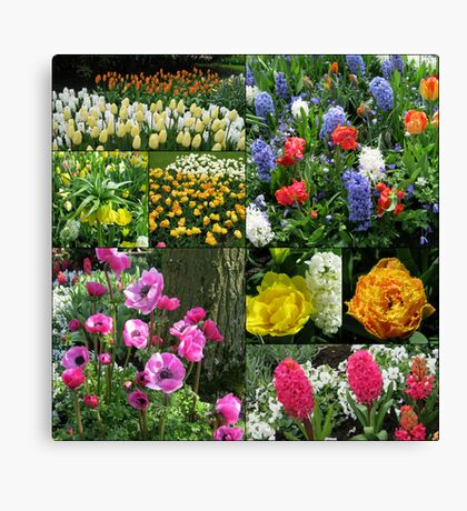 Keukenhof Collage featuring Anemones and Hyacinths Leinwanddruck