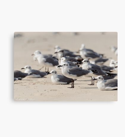 Crowded Beach Canvas Print