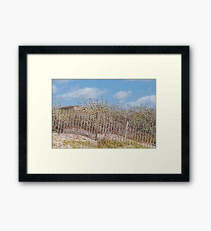 Dune Decoration Framed Print