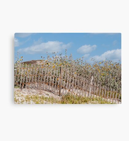 Dune Decoration Canvas Print