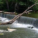 Waterfall by Vonnie Murfin