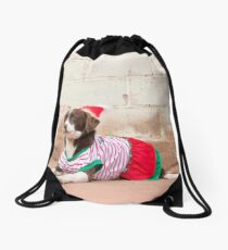 Bindy... Dressed Up For Xmas..... Drawstring Bag