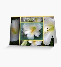 Collage of Lilies Greeting Card