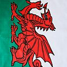 The Welsh Dragon by Steve Purnell