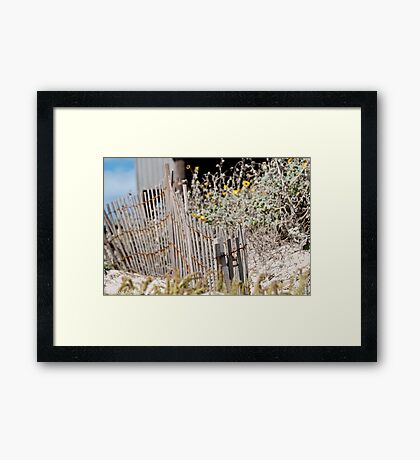 Weathered and Happy Framed Print
