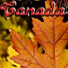 Ties of Love ~ Canada Day by JETAdamson