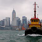 Hong Kong harbour, 2012. by johnrf