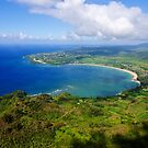 Aerial View of Hanalei Bay by thatche2