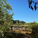 The magic of Arnhem Land - A Borradaile scene by georgieboy98