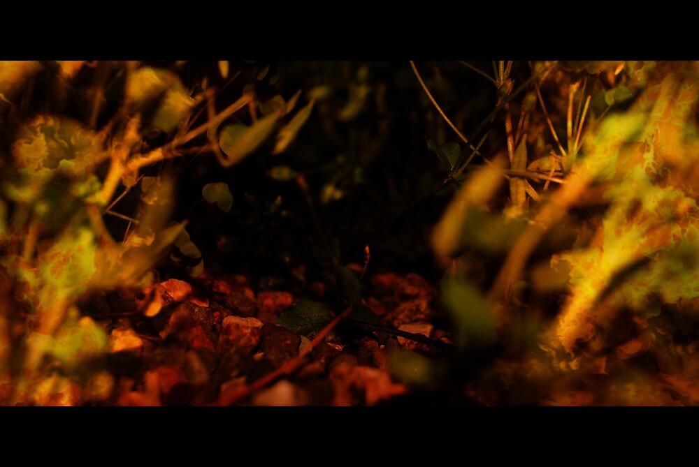 Why fern gully why!?! by miyoshiwied