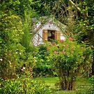 Cottage in the Woods by Debra Fedchin